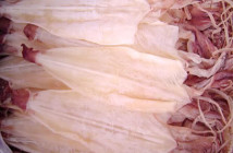 Mực một nắng thương hiệu Dasavina thịt ngọt tự nhiên, đậm đà, dai dai và mùi thơm đặc trưng